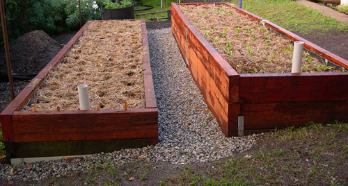 Wicking Bed9
